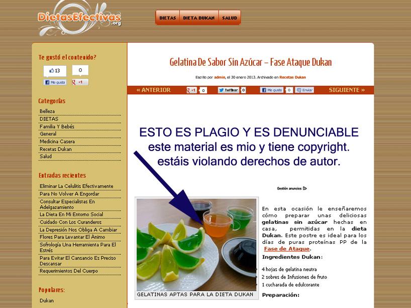 dietasefectivas.org ROBA  recetas y fotos