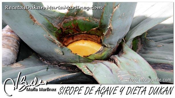 Sirope de Ágave y dieta Dukan: NO apto para Ataque o Crucero